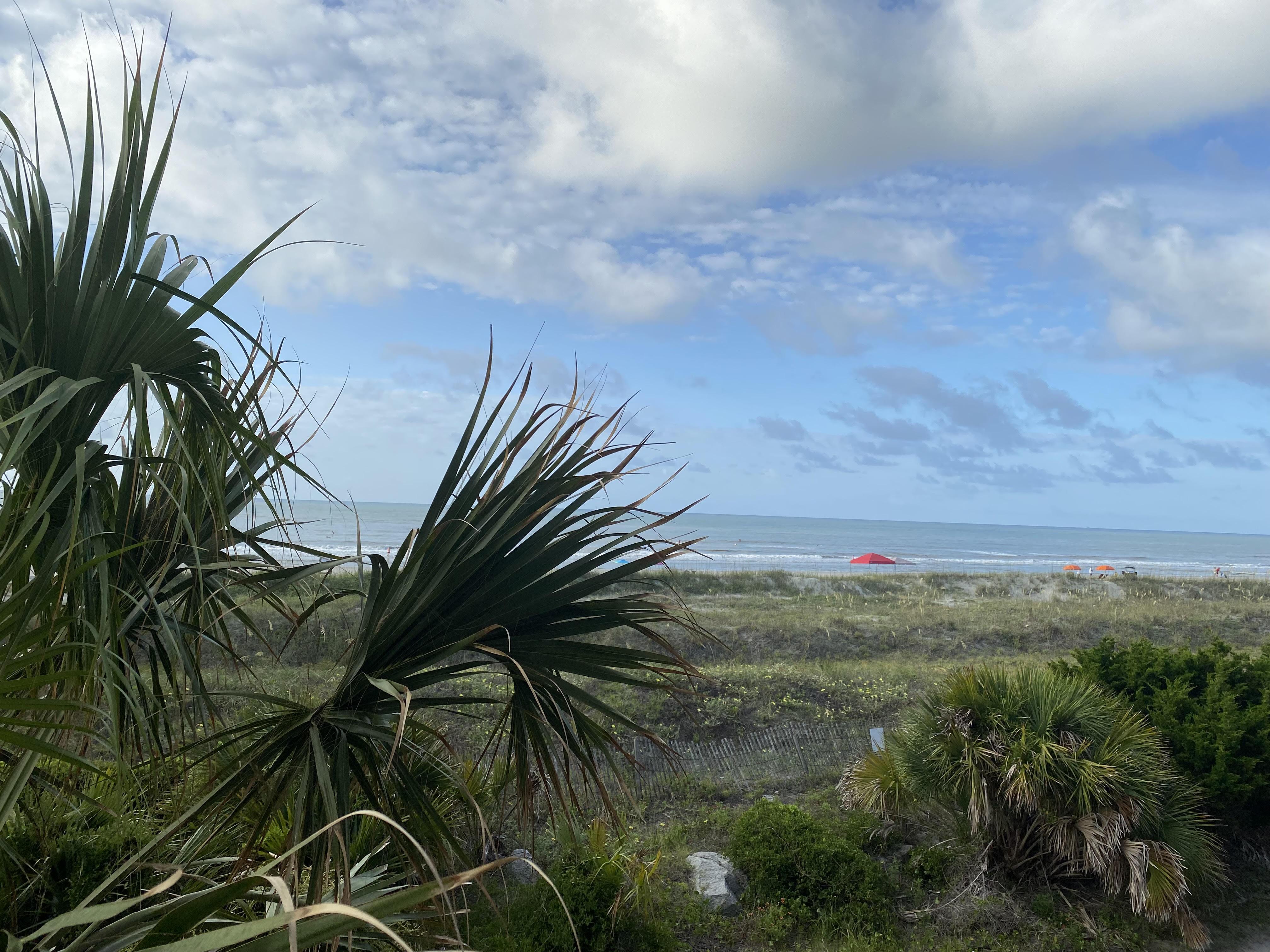The beaches of Charleston, South Carolina.