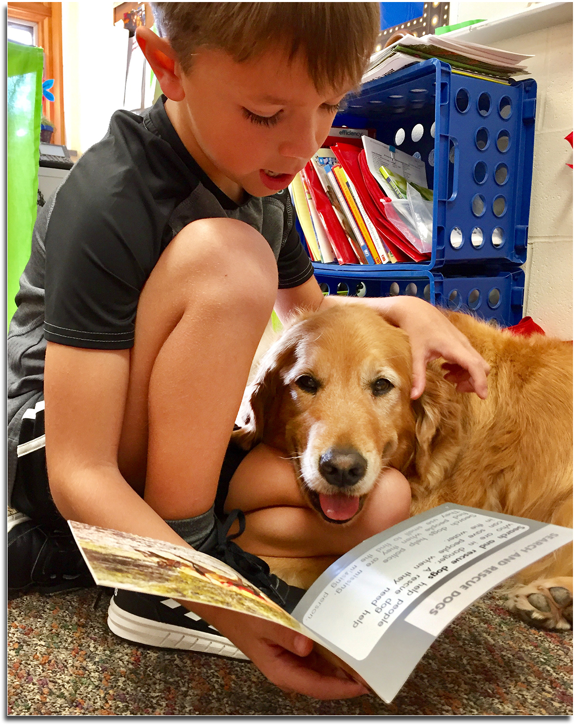 Student Reading to Sandy