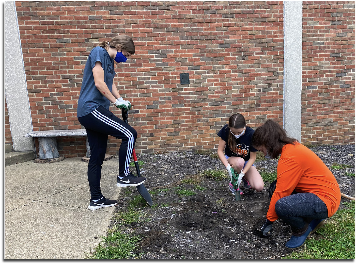 Key Club members planting tulip bulbs in front of the High School.