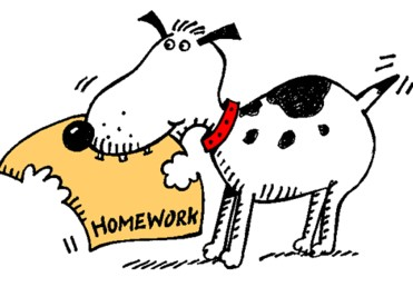 Daily Homework Dog