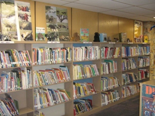 Library - Royal View Elementary