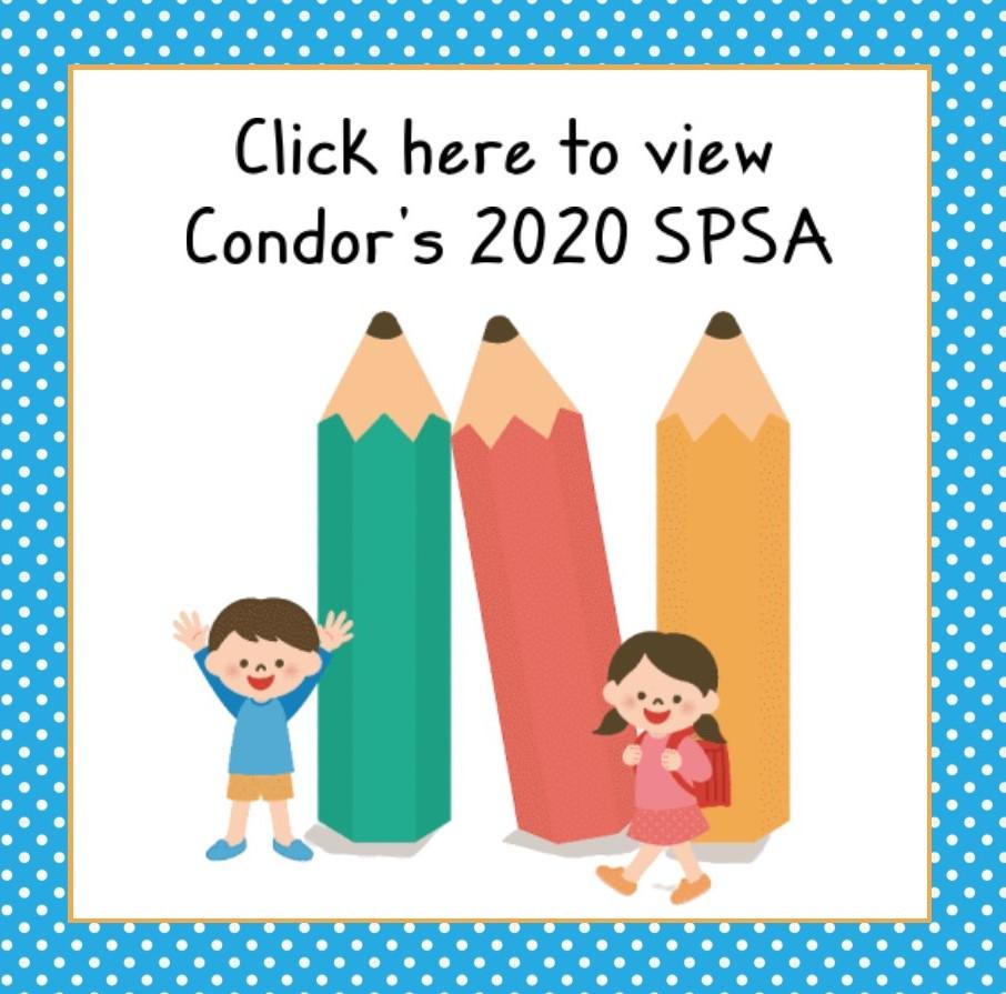 SPSA Plan