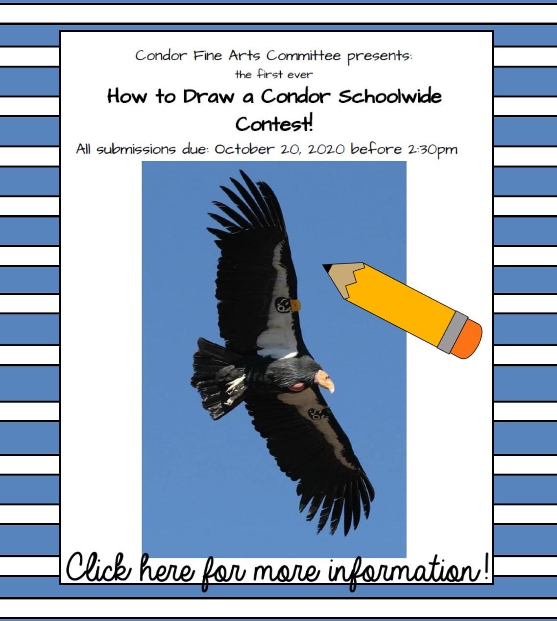 Condor Drawing Contest
