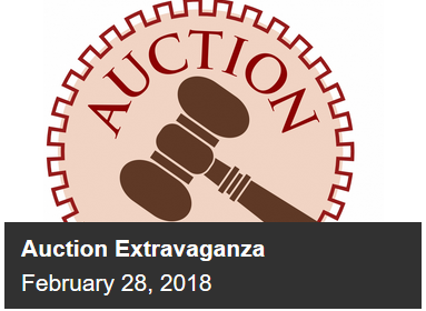 Auction Extravaganza