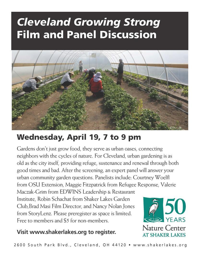 Film panel flyer