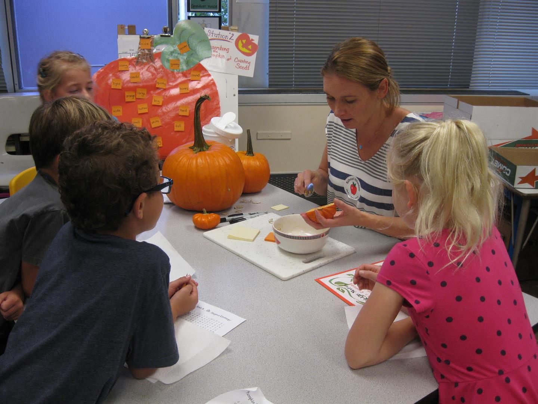 Chippewa students participate in Pumpkin Mania
