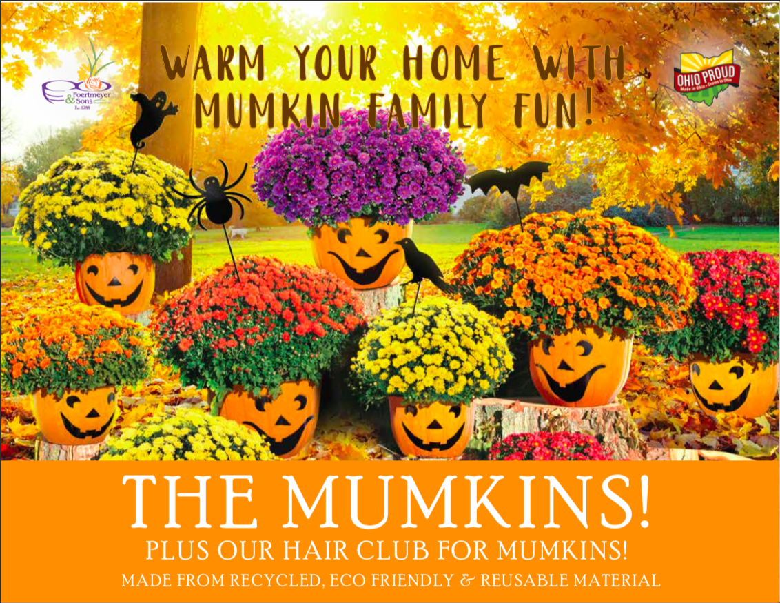 Flyer for mums