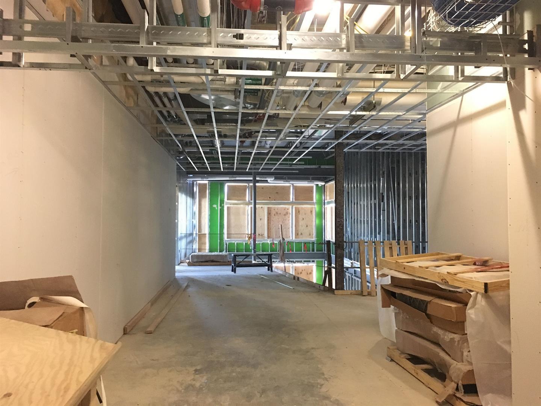 Corridor & Atrium Ceilings