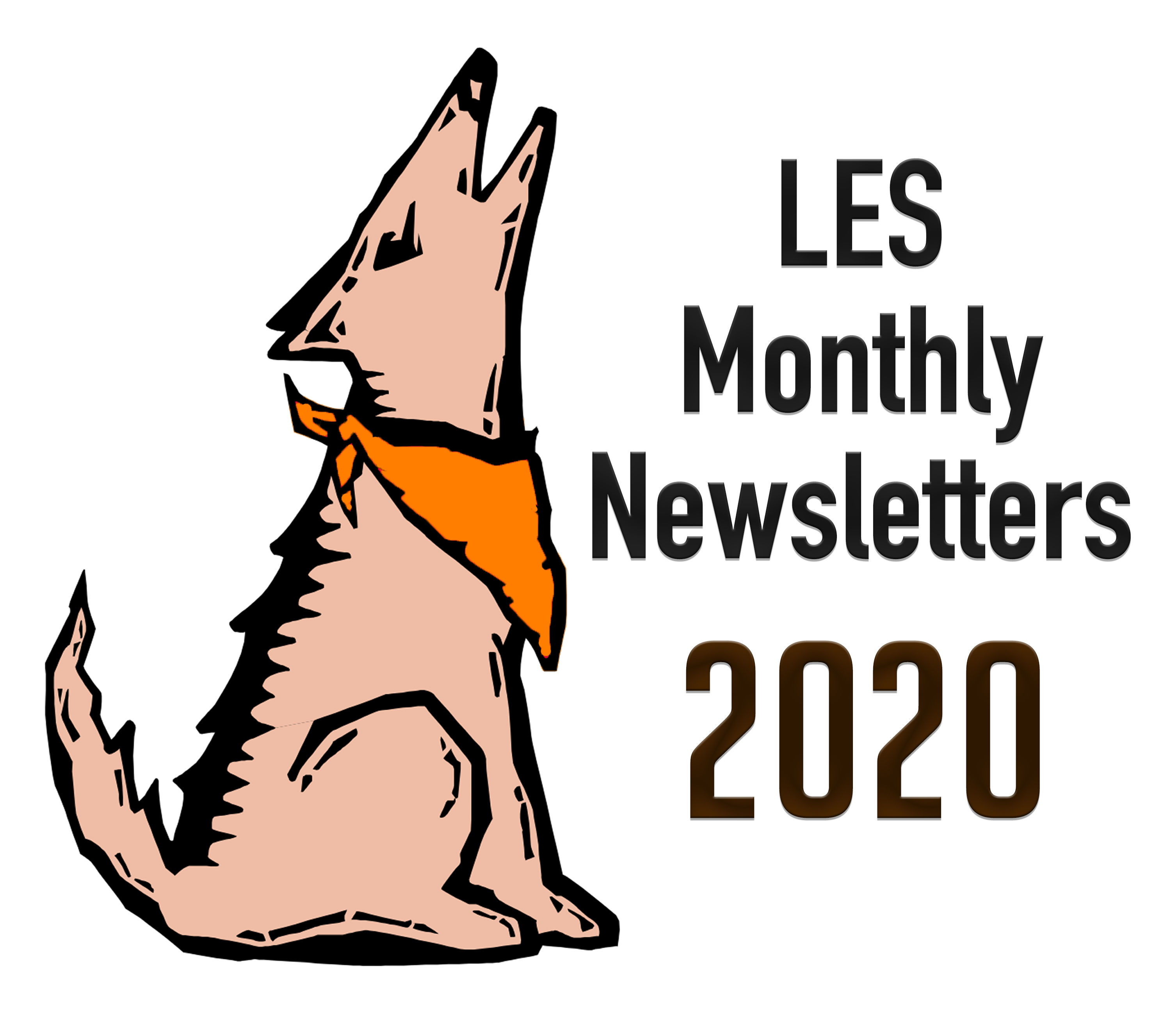 LES Monthly Newsletters 2020